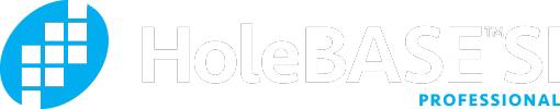 HoleBASE SI logo white